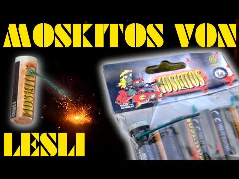 Lesli Moskitos (aggressive, laut summende Bienen) Top Neuheit 2014